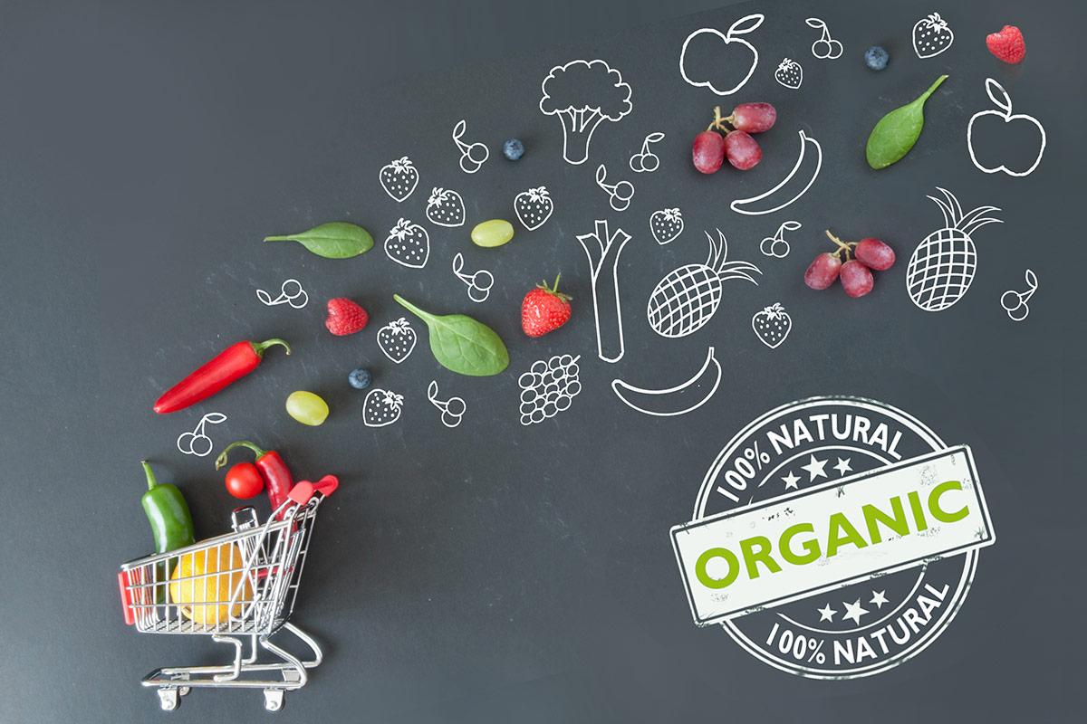 Alimentos orgánicos – ¿Qué son? Diferencias nutricionales con los tradicionales