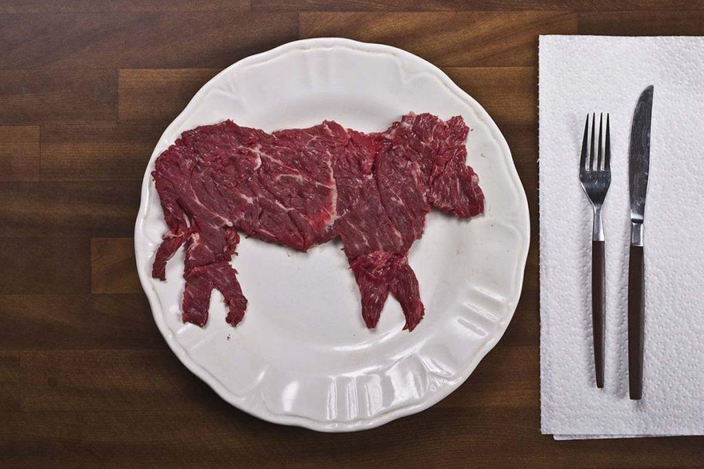carnivoros contra vegetarianos dieta de la carne debate