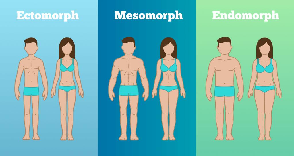 dieta-para-ectomorfos