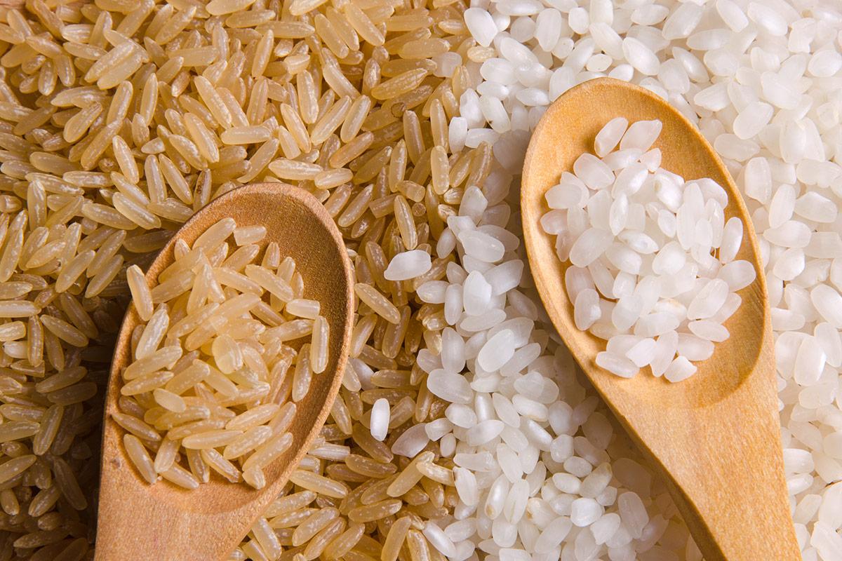 Arroz integral vs arroz blanco – Diferencias nutricionales