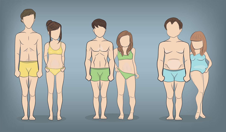 Tipos de cuerpo o complexión física – Endomorfo, mesomorfo y ectomorfo