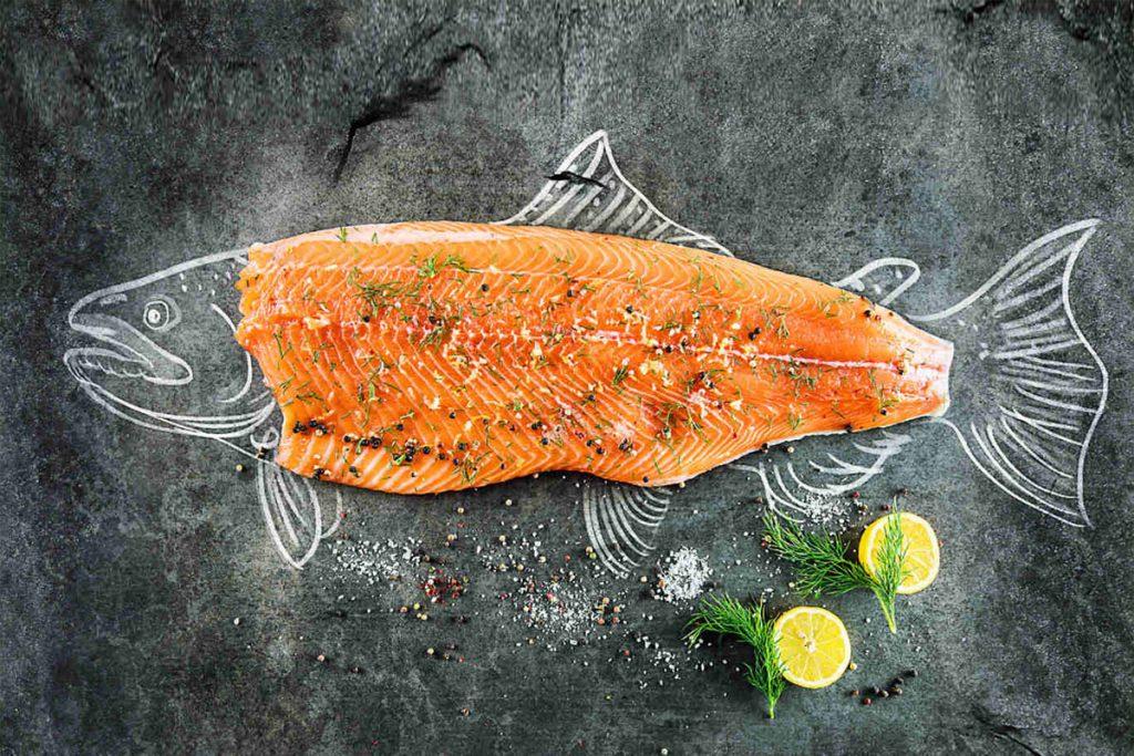 Salmón-dieta alta en calorías
