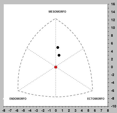 endomorfo mesomorfo ectomorfo