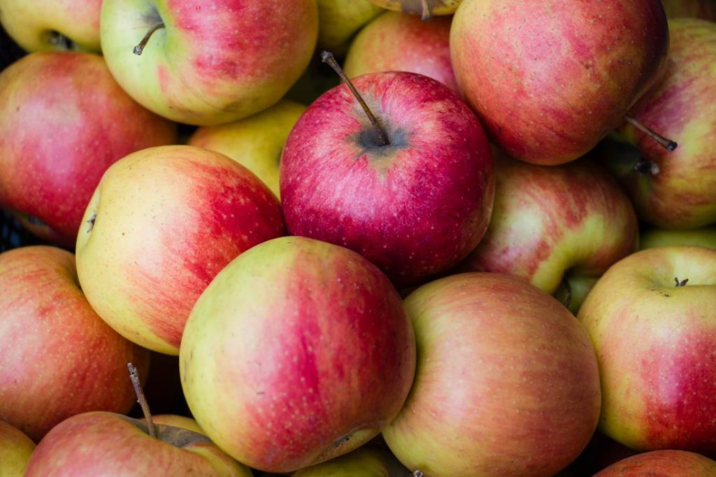manzana valor nutricional 100 g