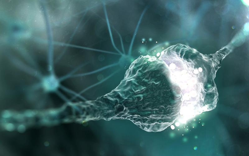 noreprefina vs dopamina vs serotonina
