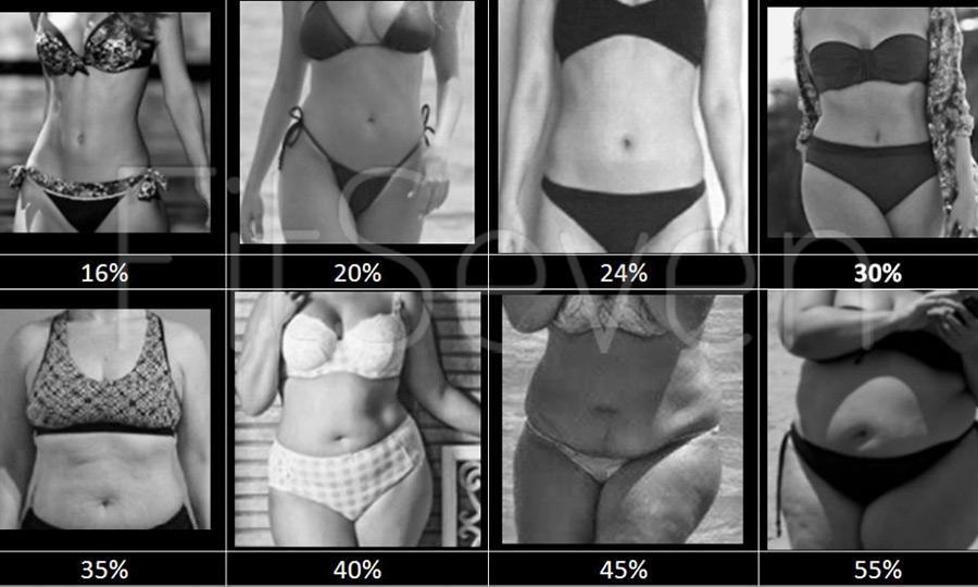 porcentaje de grasa corporal ideal mujeres