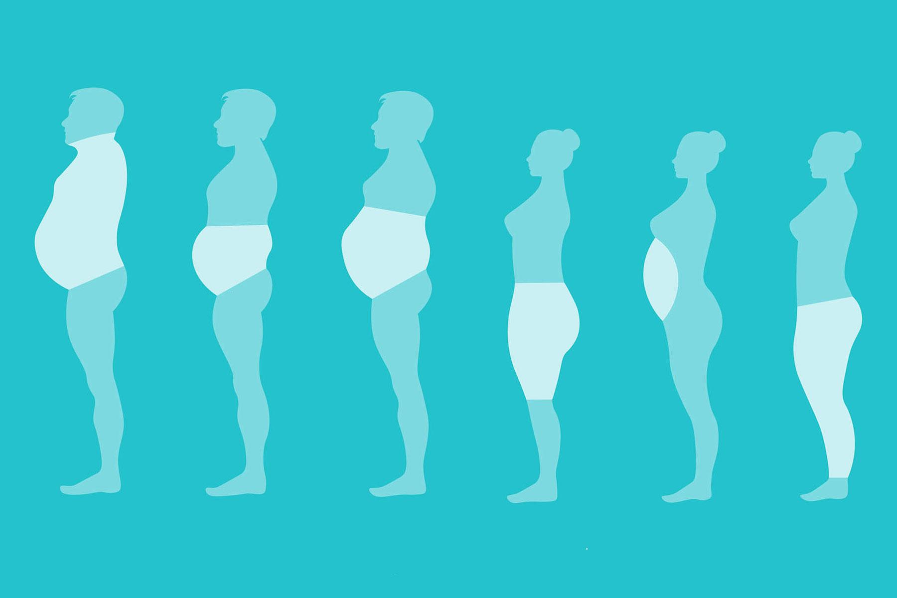 Tipos de grasa corporal – ¿Cuáles son y cómo eliminarla?