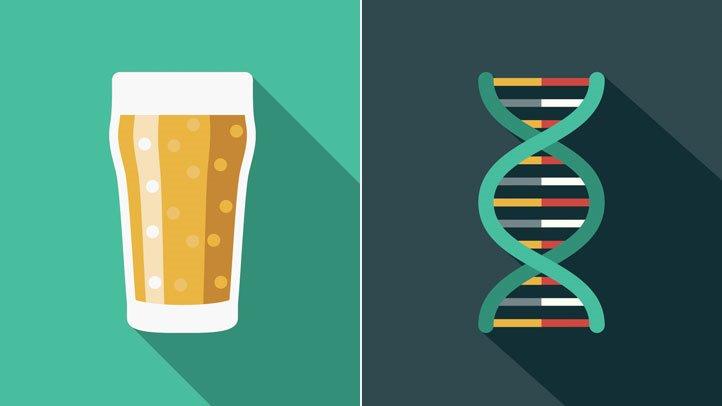 alcohol y metabolismo