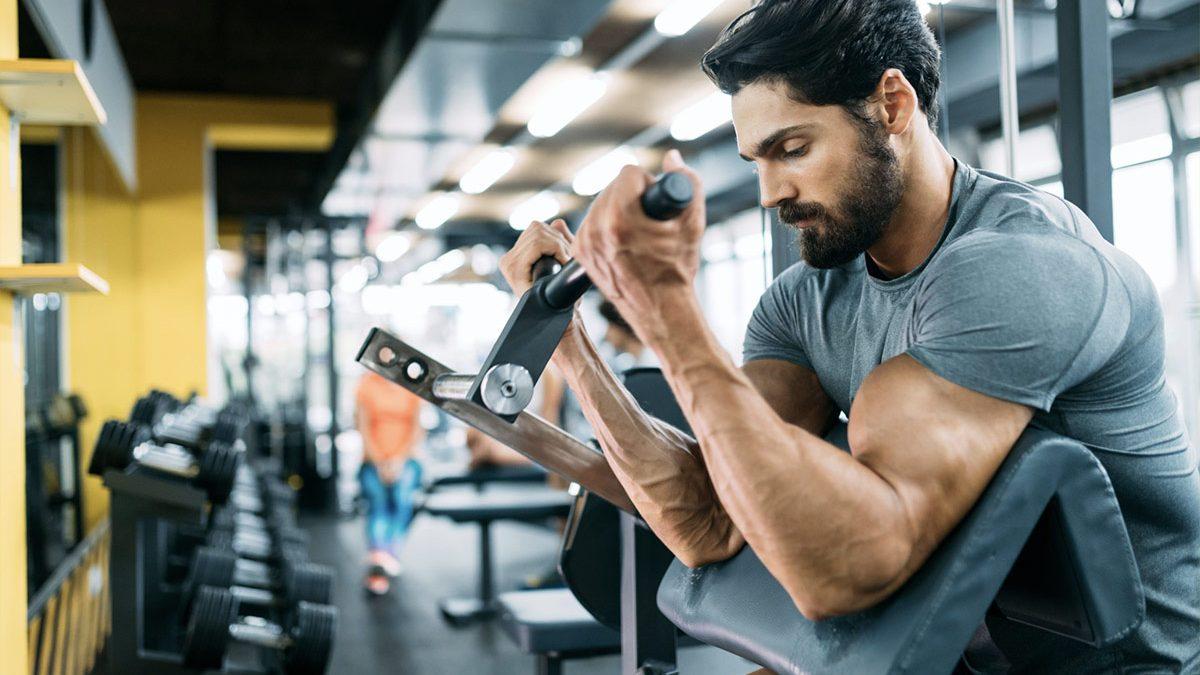 Ejercicios para entrenar bíceps – ¿Cómo tener brazos grandes y fuertes?