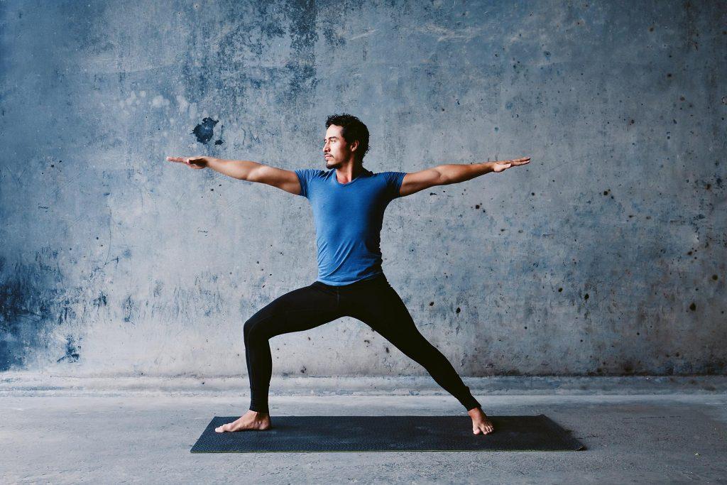 tipos de yoga para principiantes