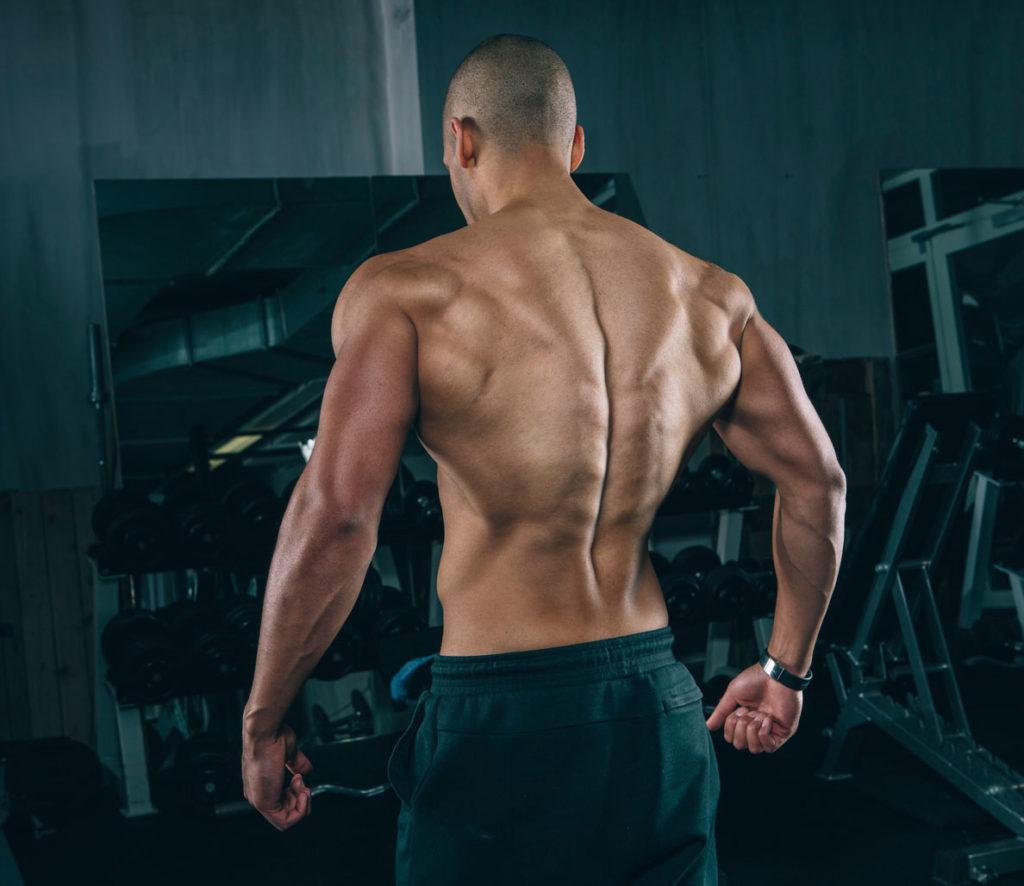 elevaciones laterales hombros deltoides