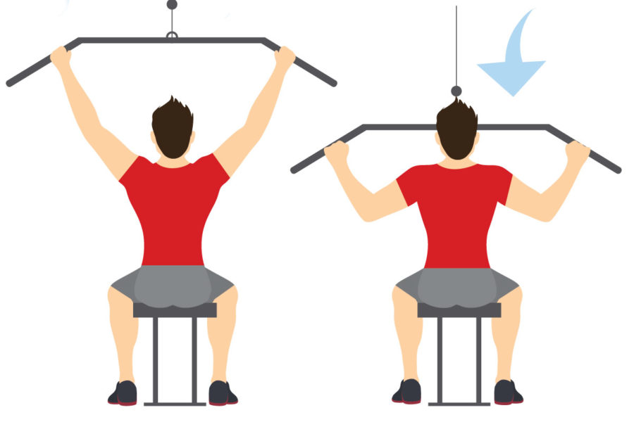 rutina de hipertrofia muscular ejercicios