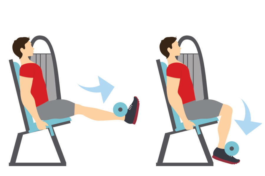 rutina de hipertrofia piernas