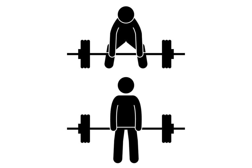 espalda ejercicios con mancuernas barras