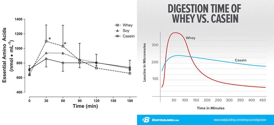 caseína proteina lenta
