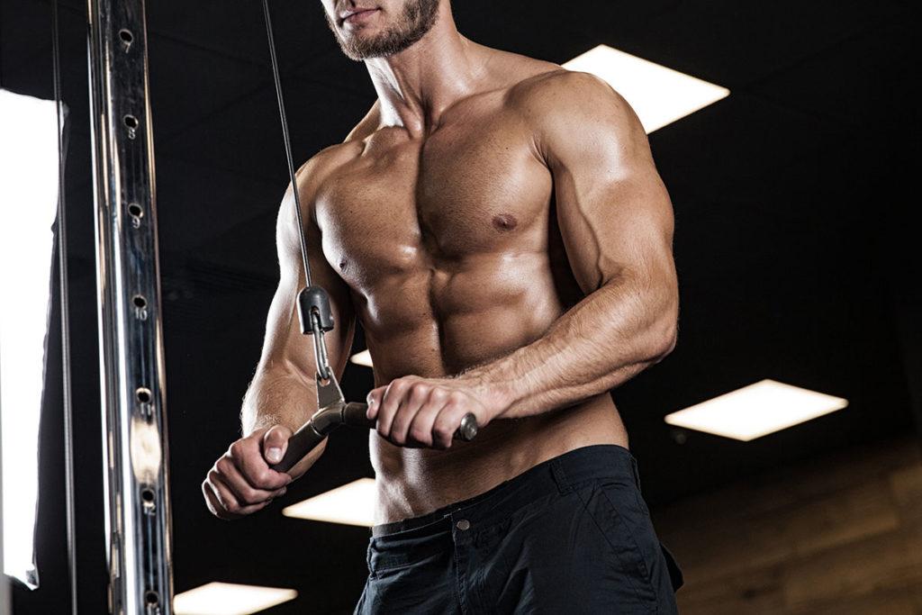 como trabajar los triceps ejercicios volumen