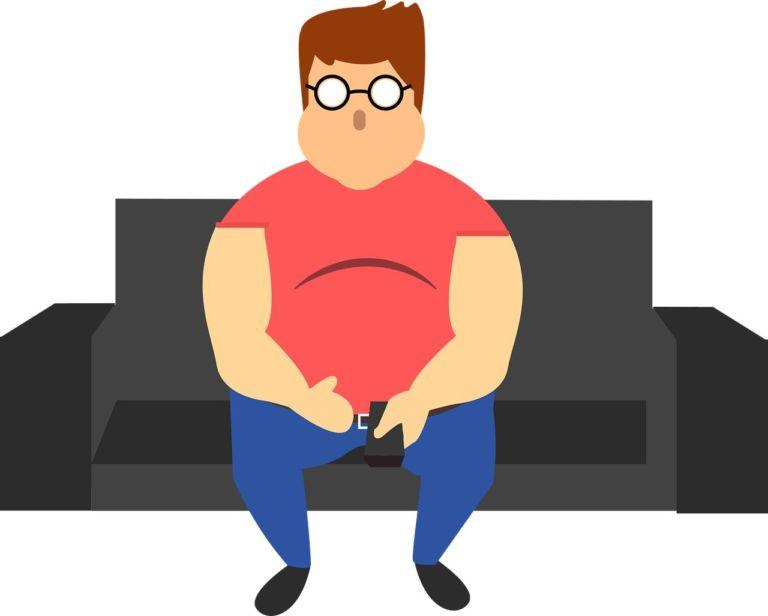 exceso de grasa causas