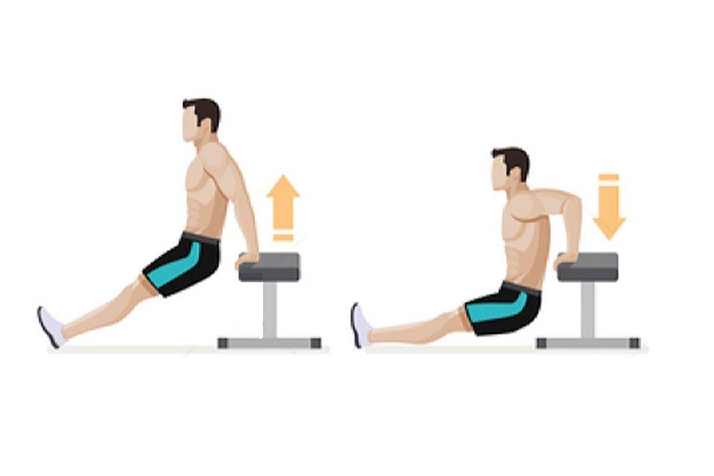 ejercicios para trabajar los triceps volumen