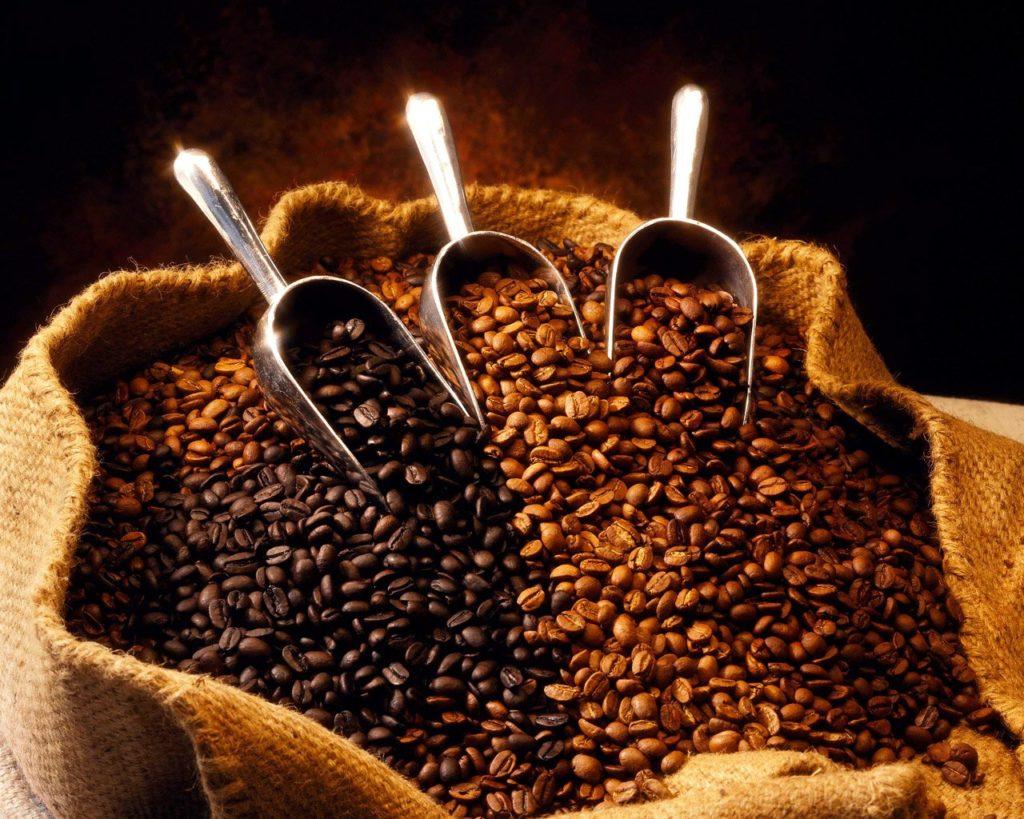 granos de café propiededes