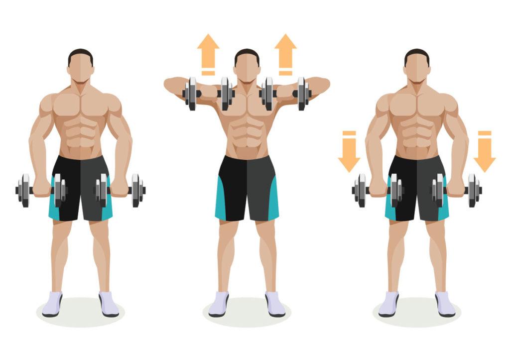 ejercicios con mancuernas para hombros