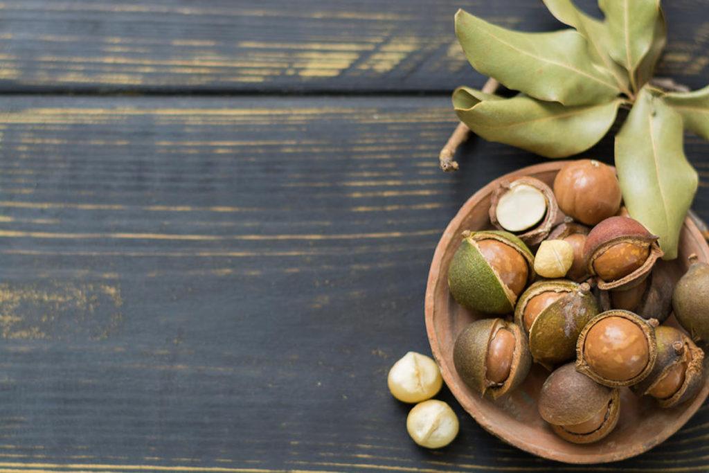 macadamia propiedades nutricionales