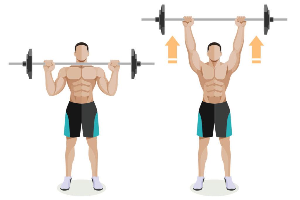 mejores ejercicios para hombros volumen