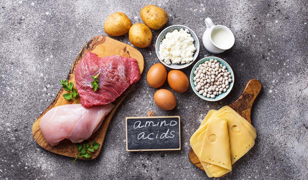 alimentos con aminoacidos esenciales