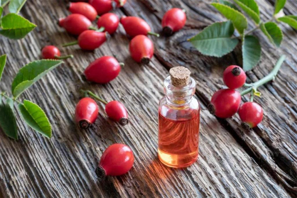 escaramujo beneficios propiedades nutricionales usos rosa mosqueta