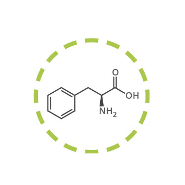 fenilalanina funcion definicion