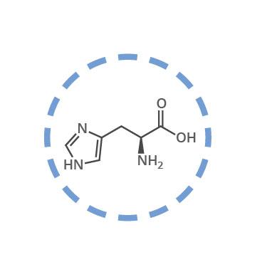 aminoacidos esenciales histidina
