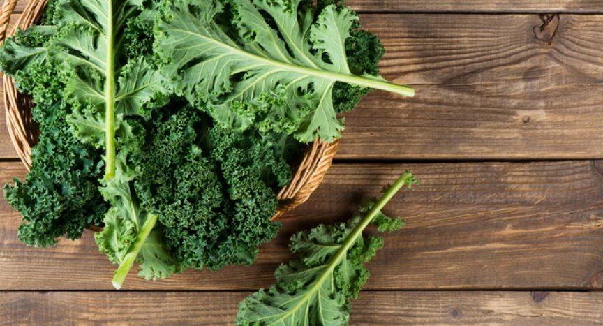 verduras low carb