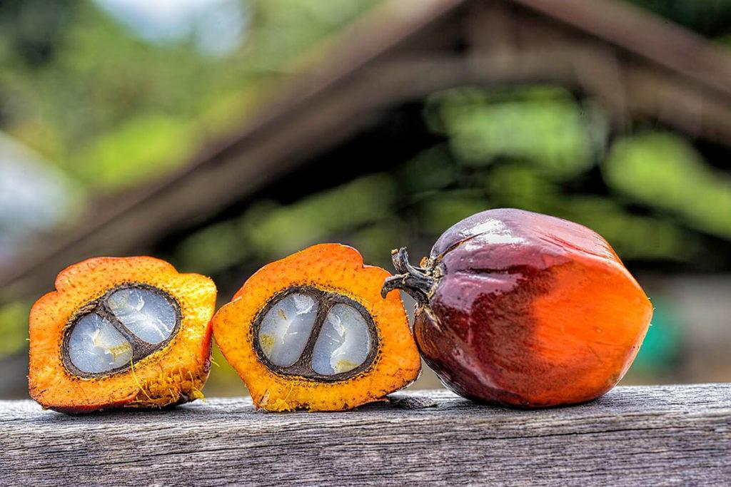 productos usos aceite de palma