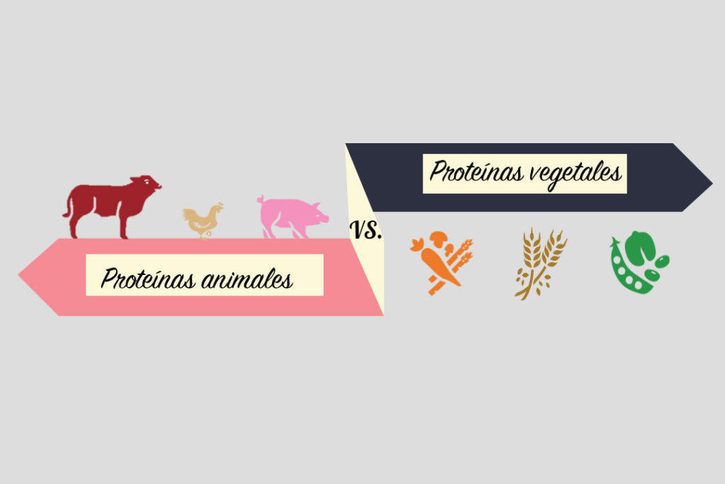 proteínas de alto valor biologico animales vs vegetales