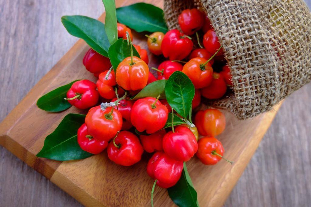 acerola vitamina c propiedades beneficios