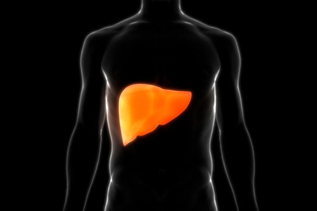 dieta para hígado graso plan de alimentación menú