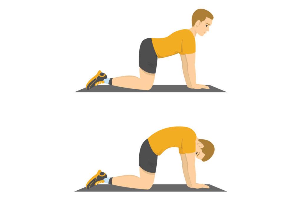 ejercicios de espalda estirar sin aparatos