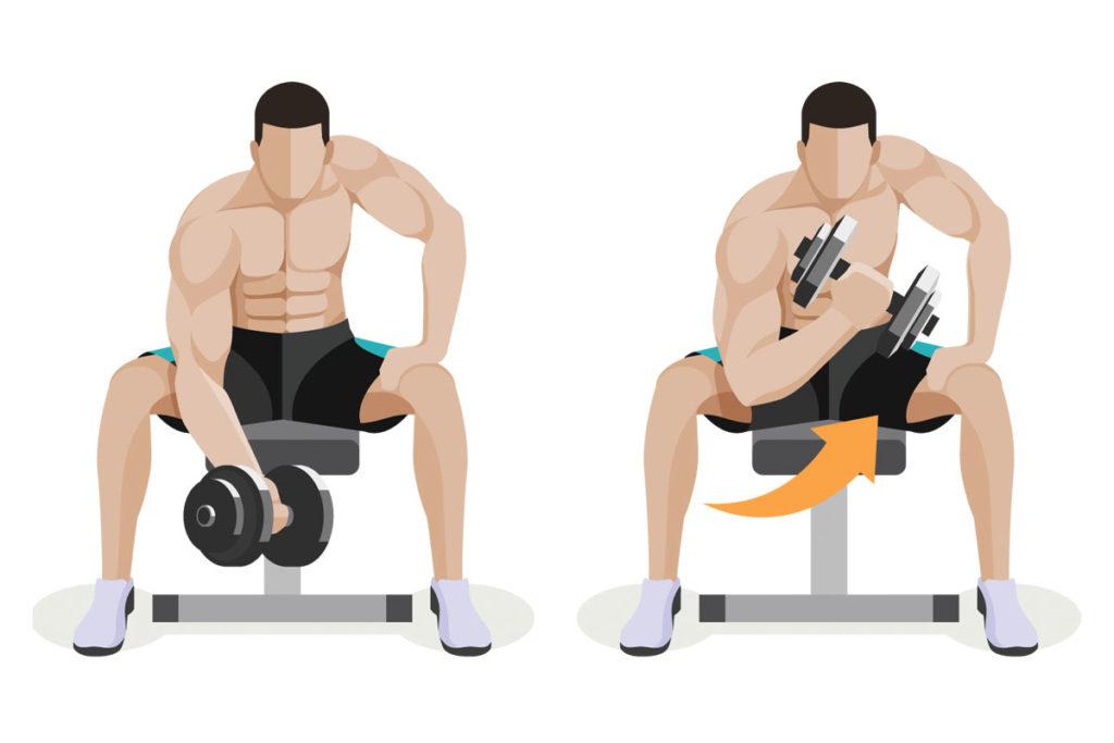 ejercicios en casa para trabajar brazos