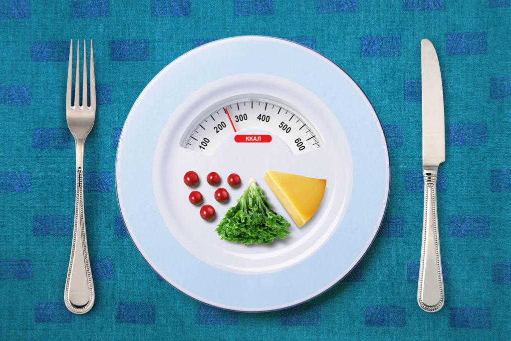 que es el contenido calorico formula