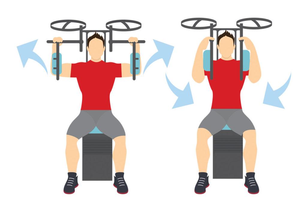 ejercicios todo el cuerpo ectomorfos