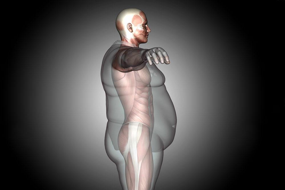 ¿Cómo reducir grasa abdominal? – Dieta, ejercicios y suplementos