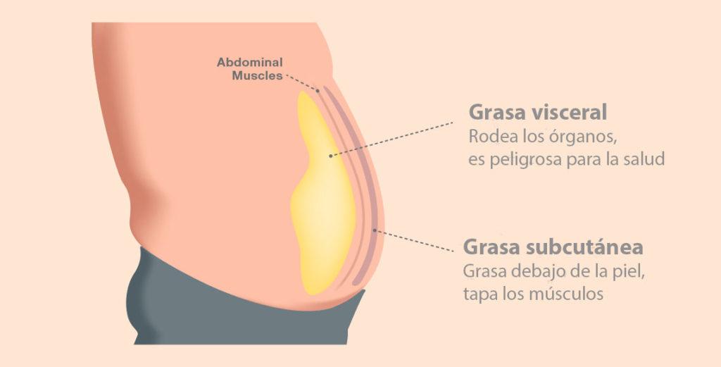 como eliminar grasa subcutanea