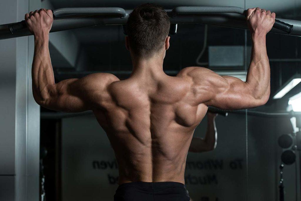 ejercicios de musculacion de espalda sin aparatos