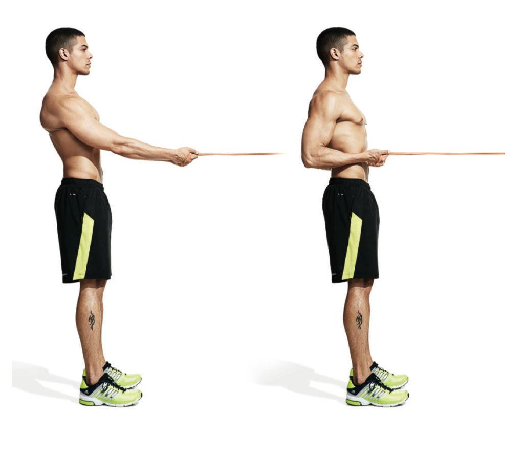 como aumentar los musculos de la espalda en casa
