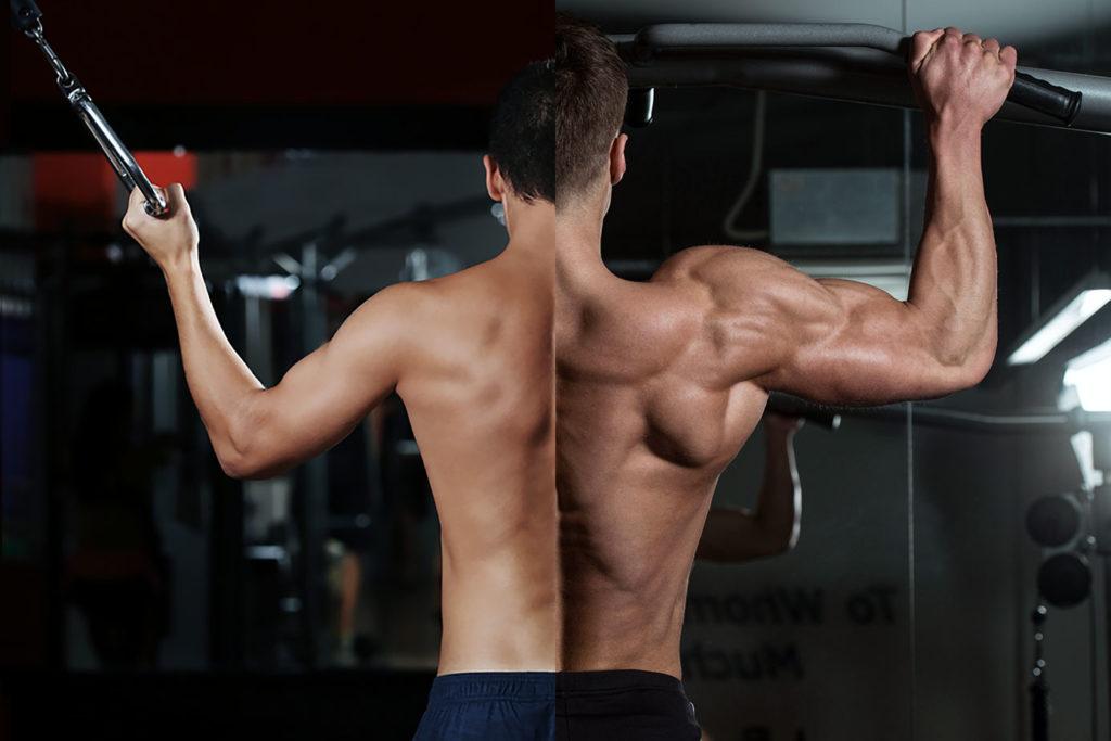 recuperacion muscular tiempos