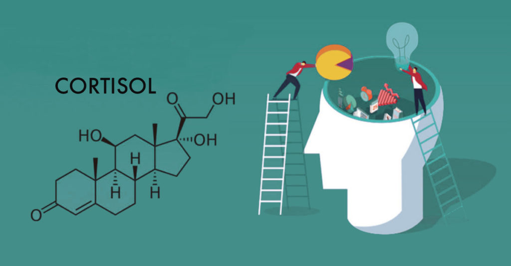 causas de cortisol alto